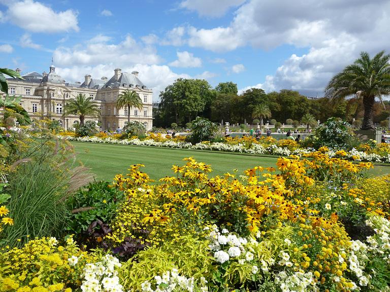 Cinco amarillas que querrás tener en tu jardín, flores amarillas, jardinería